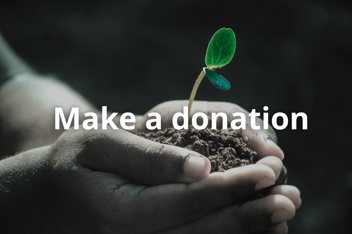 donate-to-hope-clinic-mckinney-today